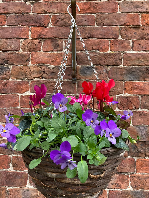 "12"" Hanging Basket (Round Base)"