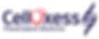 clox logo.png