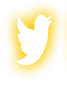 logo tweeter.png