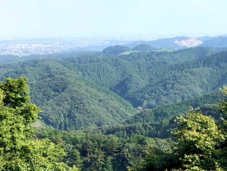 久しぶりの高尾山