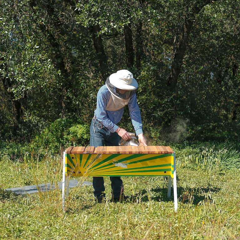 Building Topbar Hives