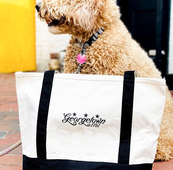 Canvas Bag and Doggie.jpg