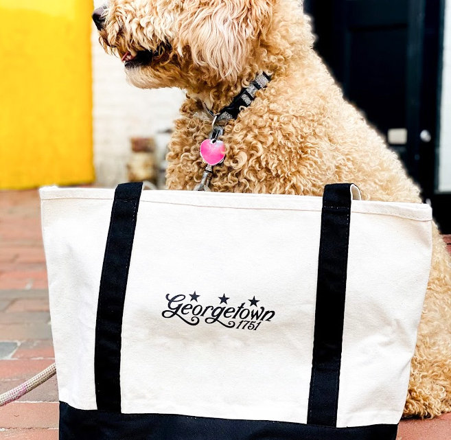 Canvas Bag and Doggie.jpg