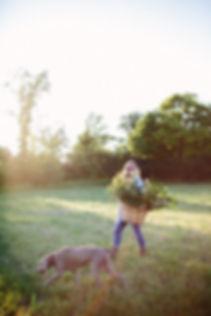 leaf & bloom | Corynn Fowler Photography