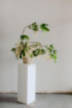 19-0613-DanijelaWeddings-FlowerCollectiv