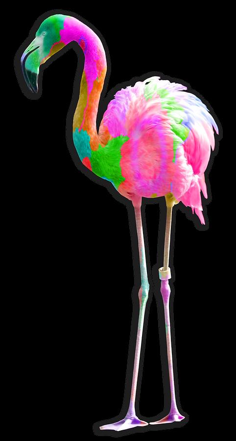 Flamingo Floral 4.png