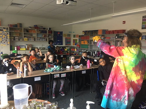 Provide Science for a classroom of 20 students