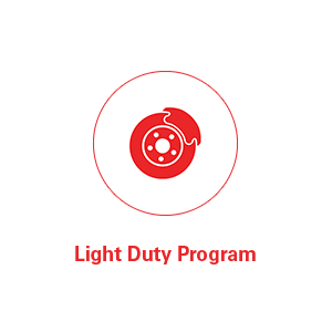 Light Duty Program
