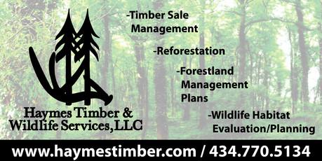 Haymes Timber Proof.jpg