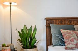 Cyprès Room