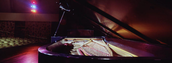 panoramic-images-grand-piano-on-a-concer