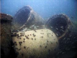 Marys Reef