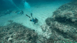 crystal clear waters to dive
