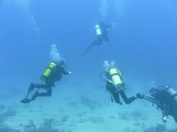 scuba class certification dives