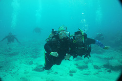 students on check out dives