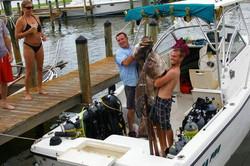 Spear fishing Stump Pass FL