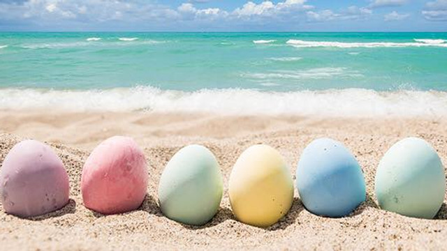 CANCELED: Englewood Beach Easter Cleanup with Green Tide Conservation Team