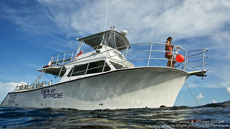 Key Dives Group Dive Trip to Islamorada Florida