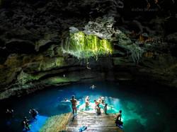 Florida Springs diving