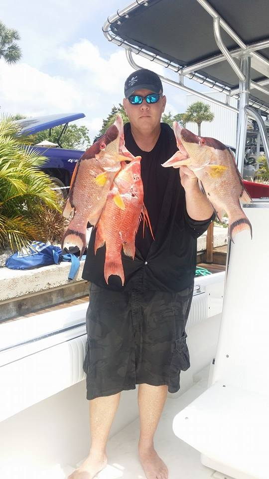 Hogfish speared here in local waters