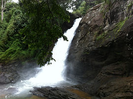 Soochipara_Falls.jpeg