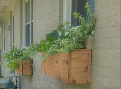 Cedar flower boxes