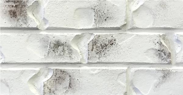 brick-bianco-white