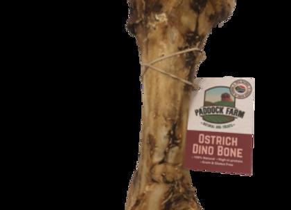 Ostritch Bone