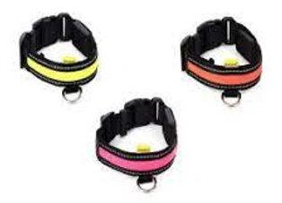 LED Collar