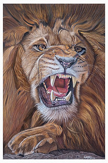 Gary Thomas | Wildlife and Custom Pet Portraits | Whozart Portraits | Brisbane, Queensland, Australia