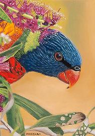Whozart Parrot 2 web_small.jpg