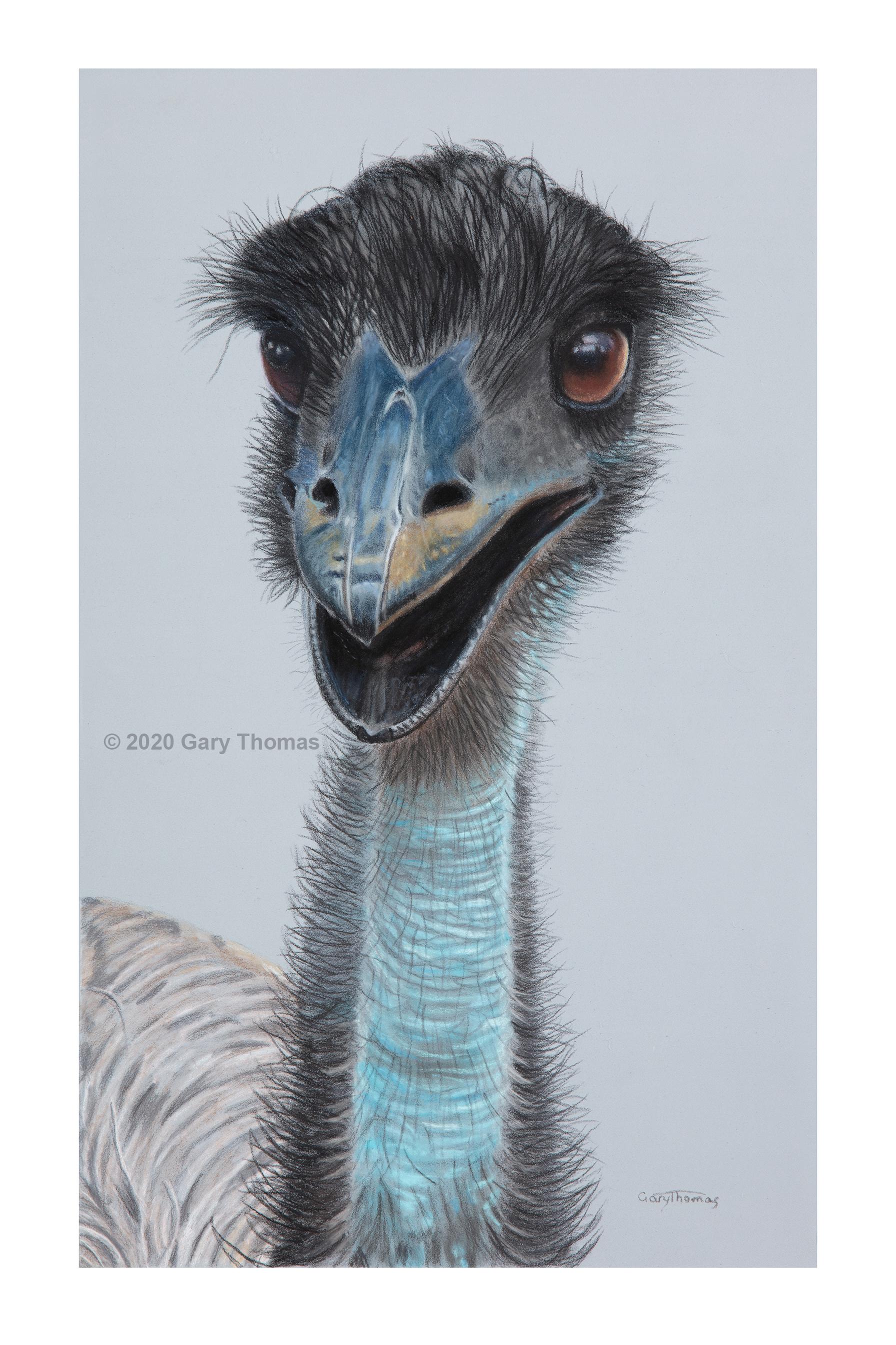 Happy_Emu_3