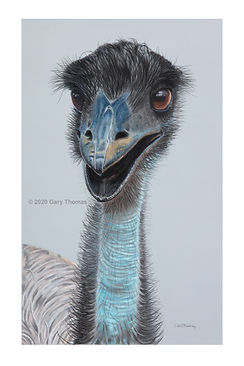 Happy_Emu_3.jpg