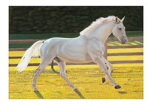 Beth_Horse_Final_web.jpg