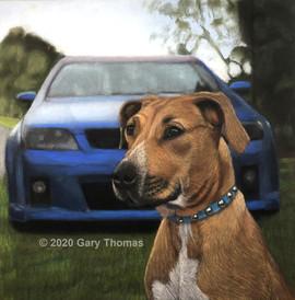 Dog_Car_3 copy.jpg