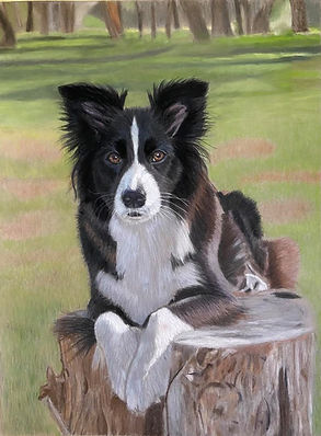 Gary Thomas | Hyper-realistic portraits | Custom Pet Portraits | Whozart Portraits | Brisbane, Queensland, Australia