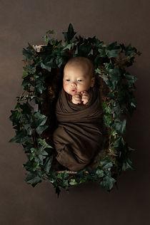Melbourne Baby Photographer web-3.jpg