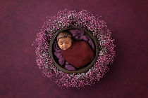 Melbourne Baby Photographer web-1.jpg