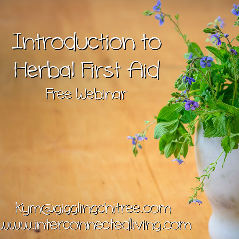 Intro to herbal first aid no date_edited.jpg