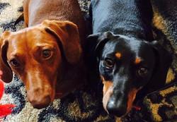 Sasha and Sophie