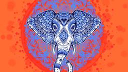 Elephanta, la nuova canzone di Bonsugi è in arrivo...
