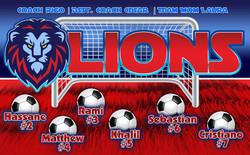 3x5_LIONS WEB