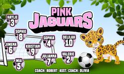 PinkJaguars-15