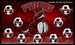 Pythons-14