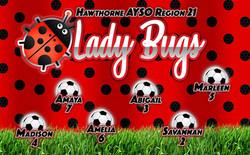 36x58_ladybugs WEB