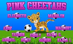 Pink Cheetahs_15