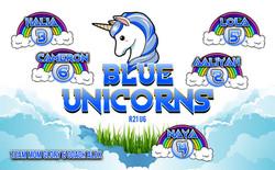36x58_BlueUnicornsWEB