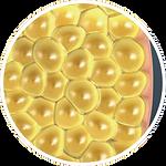 fat-cells.png