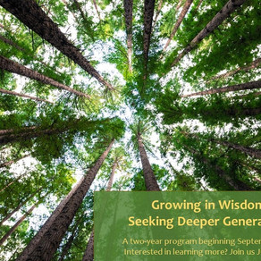 Growing in Wisdom:  Seeking Deeper Generativity