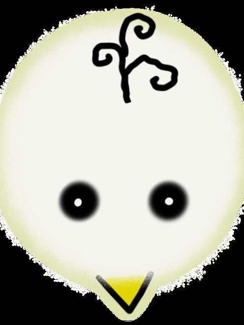 Spook - Bird's Brain Series